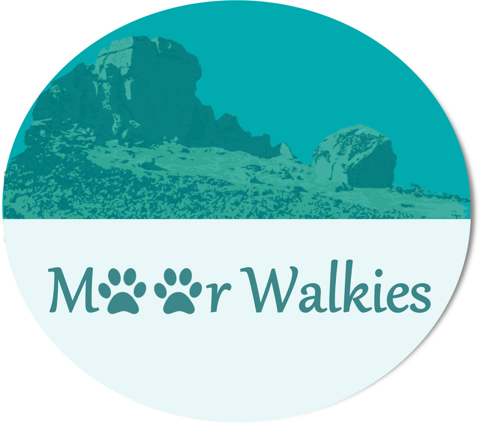 Local Website Design Service for new dog walking business in Ilkley